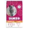 IAMS Cat Senior & Mature Ocean Fish
