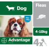 Advantage 100 for Dogs 4-10kg - 4 pipettes