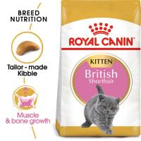 Royal Canin Kitten British Shorthair Dry Cat Food