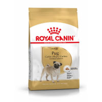 Royal Canin Pug Adult Dog Dry Food