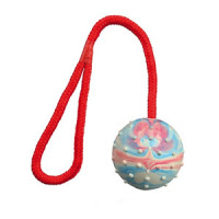 Trixie Ball on a Rope