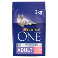 Purina ONE Adult Dry Cat Food - Salmon & Whole Grains