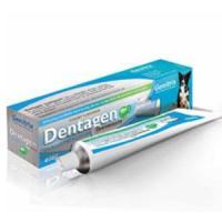 Dechra Dentagen Poultry Flavoured Toothpaste