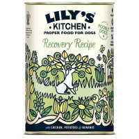 Lily's Kitchen Recovery Recipe Wet Dog Food - Chicken