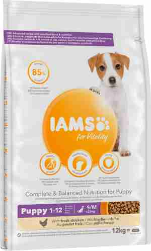 IAMS Puppy & Junior Small & Medium Breed