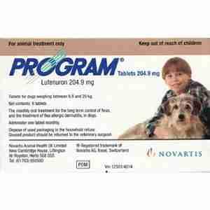 Program for Dogs
