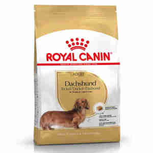 Royal Canin Dachshund Dry Adult Dog Food