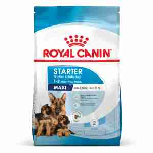 Royal Canin Maxi Starter Mother & Babydog Adult & Puppy Dog Food