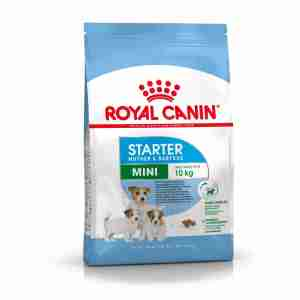 Royal Canin Mini Starter Mother & Babydog Dry Adult & Puppy Dog Food