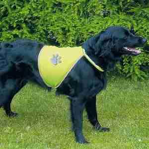 Trixie Safer Life Safety Vest for Dogs