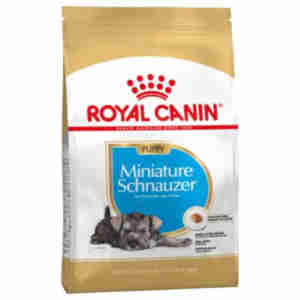 Royal Canin Miniature Schnauzer Junior