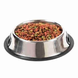 Kokoba Non-Slip Dog Bowl - Stainless Steel