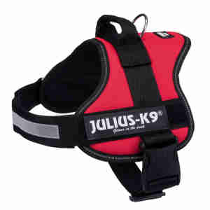 Julius-K9® Powerharness in Red