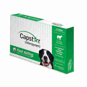 Capstar Flea Treatment Tablets for Dogs