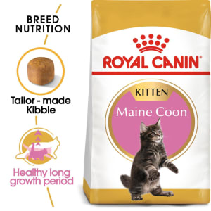 Royal Canin Kitten Maine Coon Dry Cat Food