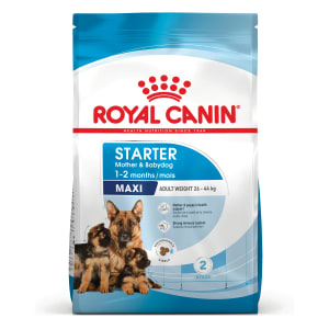 Royal Canin Maxi Starter Mother & Babydog Dry Dog Food