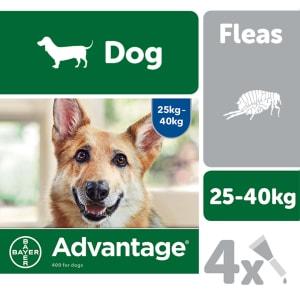 Advantage 400 Spot On Dog Flea Treatment for Dogs - 4 Pipettes