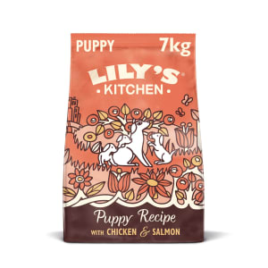 Lily's Kitchen Grain Free with Puppy Recipe Dry Dog Food - Chicken & Salmon