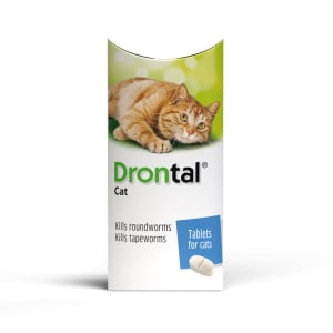 Drontal Film-Coated Worming Tablet for Cats