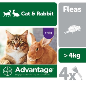 Advantage 80 Spot On for Large Cat & Rabbits