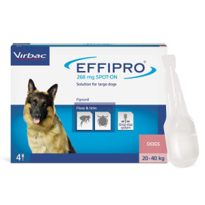 Effipro Spot-On Flea & Tick Treatment for Large Dogs (20-40kg)