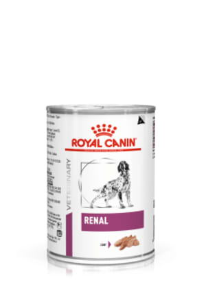 Royal Canin Renal Adult Wet Dog Food