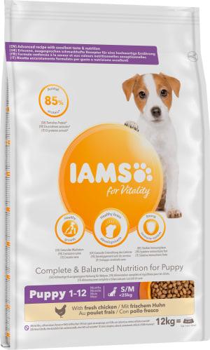 IAMS-Puppy--Junior-Small--Medium-Breed