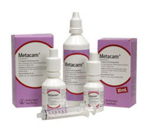 Metacam Oral Suspension Dogs