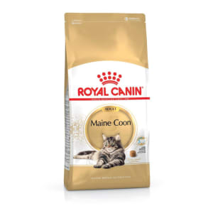 Royal Canin Maine Coon Adult Cat Dry Food