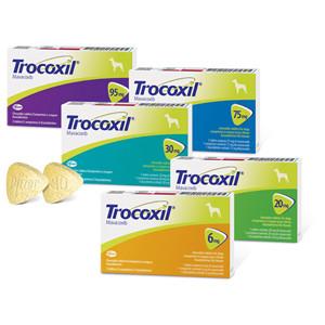 Trocoxil