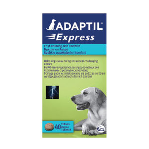 Adaptil Express Stress Relief Tablets for Dog