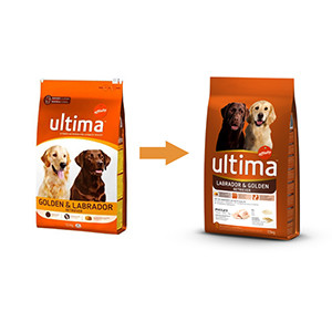 Ultima Labrador & Golden Retriever