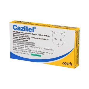 Cazitel Cat
