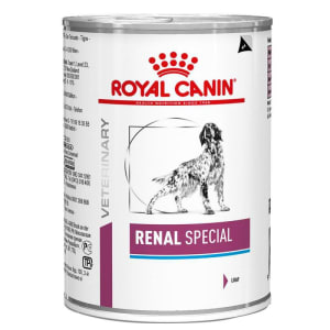 Royal Canin Renal Special Dog