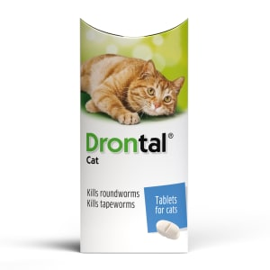 Bayer Drontal Cat Worming Tablet