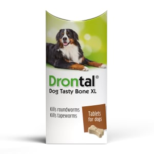 Bayer Drontal Plus XL Flavour Dog Worming tablet