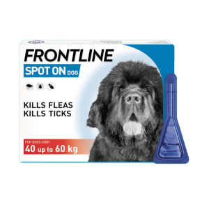 Frontline Spot On Flea & Tick Treatment for Extra Large Dogs (40-60kg)