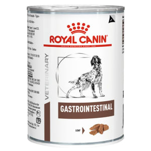 Royal Canin Gastrointestinal Adult Wet Dog Food