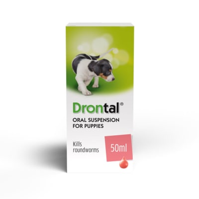 Drontal Puppy Worming Suspension Pet Supermarketcouk
