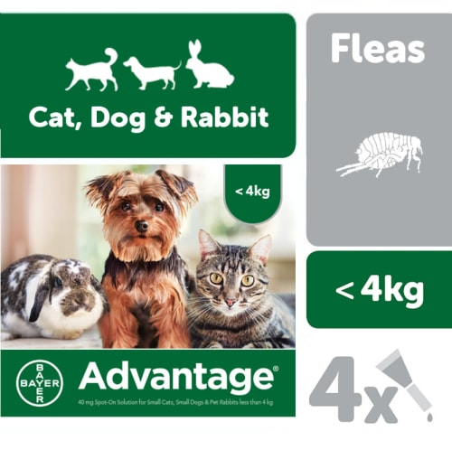 Pet Supermarket Co Uk Uk Online Pet Supplies Store Free Delivery